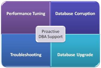 proactive dba